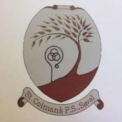 St. Colman's PS Saval 7 week Multi-sports Course P1-P2